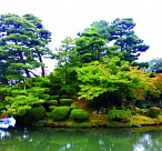 [이성낙의 그림이야기] 일본 정원을 보며 우리 문화를 본다