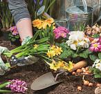 공간과 인생까지 가꿔주는 직업 정원사를 아시나요?