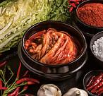 한국인의 비위 지키는 천연 소화제 '발효 식품'