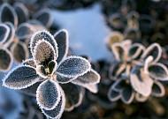 꽃샘추위 이겨내는 호흡기 질환 예방법
