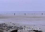 서해바닷가 풍미코스, 변산마실길