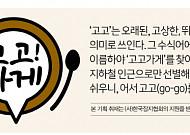[고고가게] 서울편② 61년 전통 '경기떡집'