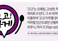 [고고가게] 서울편③ 49년 전통 '옛날집 낙원아구찜'