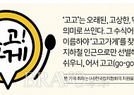 [고고가게] 대구편③ 56년 전통 '미성당'
