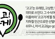 [고고가게] 대전편③ 36년 전통 '영동식당'