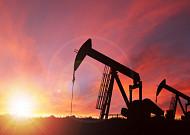"OPEC+, 감산량 확대… ""내년 국제유가 오른다"""