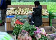 물가상승률 1.5% 상승, 농산물·석유값 '껑충'