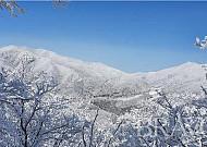 기어코 또 찾은 '하얀 산'