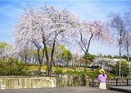 사회적 거리 두기, 우리 주변에 공원이 있다