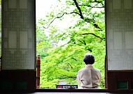5월의 '초록 샤워기' …창덕궁 후원의 휴식