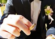 뉴노멀이 된 작은 결혼식