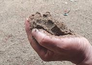 흙은 나에게 흙처럼 살라 하네!
