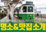 [카드뉴스] 부산 해운대 명소&맛집 소개!
