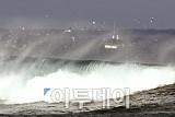 [포토]동해안 폭설 '위험한 출항'