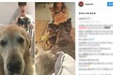 구혜선 '당신은 너무합니다' 하차, 팬들 남편 안재현 SNS에 응원 봇물… 이유는?