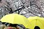 [일기예보] 오늘 날씨, 전국 대체로 흐리고 남부지방·제주도에 비…'서울 낮 20도'