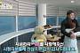 '남남북녀 시즌2', 양준혁♥김은아 부부로 산 1019일…결혼 종료 아닌 '졸혼'
