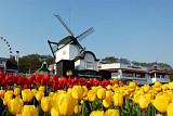 [주말에 어디갈래?] 낮엔 봄꽃, 밤엔 불꽃… 봄은 축제다
