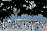 [포토]한강 물빛광장은 '이미 여름~'