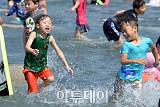 [내일 날씨] 불볕 더위 계속… 미세먼지 '보통' 자외선 '나쁨'