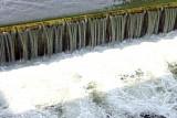 하천 뺀 물관리일원화 논란