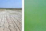 최악 가뭄에 공업용수까지 부족 … 목타는 대한민국