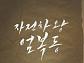 """비-이범수 '엄복동' 감독 교체, 제2의 '리얼' 되나…""""자진하차"""" VS """"연출권 침해"""""""