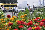 [일기예보] 오늘 날씨, 전국 대체로 맑고 선선한 가을 날씨 '서울 낮 25도'…