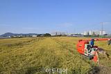[내일날씨] 전국 대체로 맑고 일교차 커…서울 아침 최저 10도