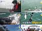'도시어부' 뉴질랜드 2탄 '태풍이 지나간 후 펼쳐진 신세계'