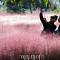 [포토] '가을을 즐기다' 순천만 국가정원 핑크뮬리