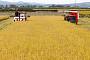 기간·지원 늘려도 '쌀 생산조정제' 신청 저조…목표 대비 10.2%