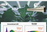 서울반도체, 원예 강국 네덜란드에 자연광 LED '썬라이크' 공급