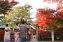 [극적인 대화방] 3.1절 일본여행으로 촉발된 애국 vs 매국 논란…벚꽃여행 갈까, 말까