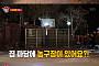 '집사부일체' 박진영 집 공개, 마당에 농구대…아침엔 올리브 오일 원샷