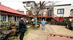 '랜선라이프' 이영자, 은퇴 후 살고 싶은 집은 제주도 전통 가옥?'