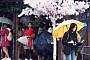 [일기예보] 오늘날씨, '미세먼지 좋음'...전국 대부분 흐리거나 비