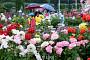 [내일 날씨] 오전 비ㆍ오후 맑음 '낮 최고 25도'…미세먼지 농도 '좋음~보통'