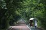 [일기예보] 오늘 날씨, 오전까지 곳곳에 천둥·번개 동반한 비 '예상 강수량 최고 30mm'…