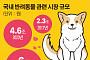 의료기기 리딩 기업들, 6조원 동물 시장 '정조준'