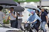 [일기예보] 오늘 날씨, 전국 흐리고 곳곳에 장맛비 '예상강수량 최고 250mm 이상'…태풍 '다나스' 북상 주목