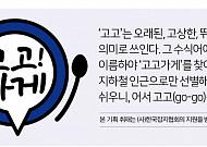 [고고가게] 인천·경기편① 73년 전통 '경인면옥'