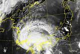 태풍 '프란시스코' 6일 밤 11시 부산 근접…김해공항 결항ㆍ부산항 폐쇄