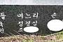 """김진태 """"조국 딸 필기시험 없이 진학, 부정입학 의혹"""