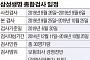 금감원-삼성생명 '전면전'… 26일부터 사전 종합검사