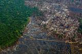 아마존 화재로 궁지 몰린 브라질...브라질산 불매운동 글로벌 확산