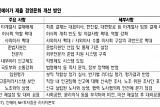 """진에어, 국토부 제재 해제 요청…""""중장기 긍정 요인"""""""