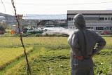 軍도 돼지열병 확산방지 총력…해당지역 야외훈련 자제