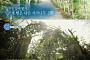 """'신기루 식당' 첫 장소는 강원도 인제…자작나무숲+들꽃 길로 시선 집중 """"아름답다"""""""