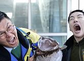 '오!만보기맨' 박군, 속초 동명항서 '미스터트롯' 히트곡 '한잔해' 열창